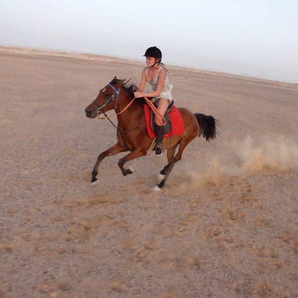 Pferde_Reiten_Hurghada.jpg