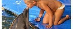 Шоу дельфинов хургада Вас ждет отличный день