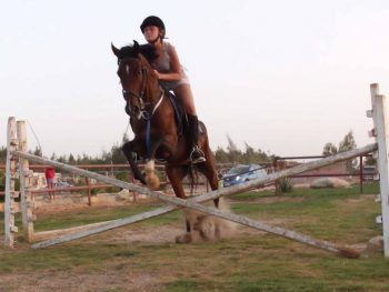 Horse Riding Hurghada 20 € | Best Arabian horses Egypt.