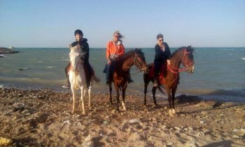 horse-riding-hurghada
