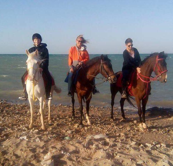 horse-riding-hurghada