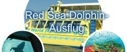 Red Sea Dolphin Catamaran