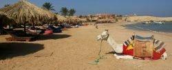 Sharm El Naga snorkeling trip 35 € | Best Hurghada Snorkeling Beach