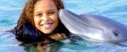 Delfinek világa