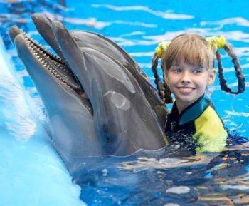 pokaz delfinów Hurghada 20 € Dolphin Show w Hurghadzie